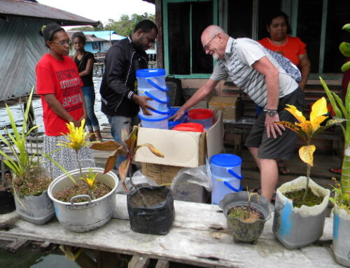 LIGHT, WATER AND MICROCREDIT FOR THREE PAPUA VILLAGES